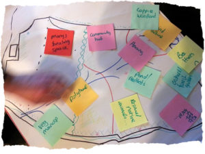 designing your site for permaculture