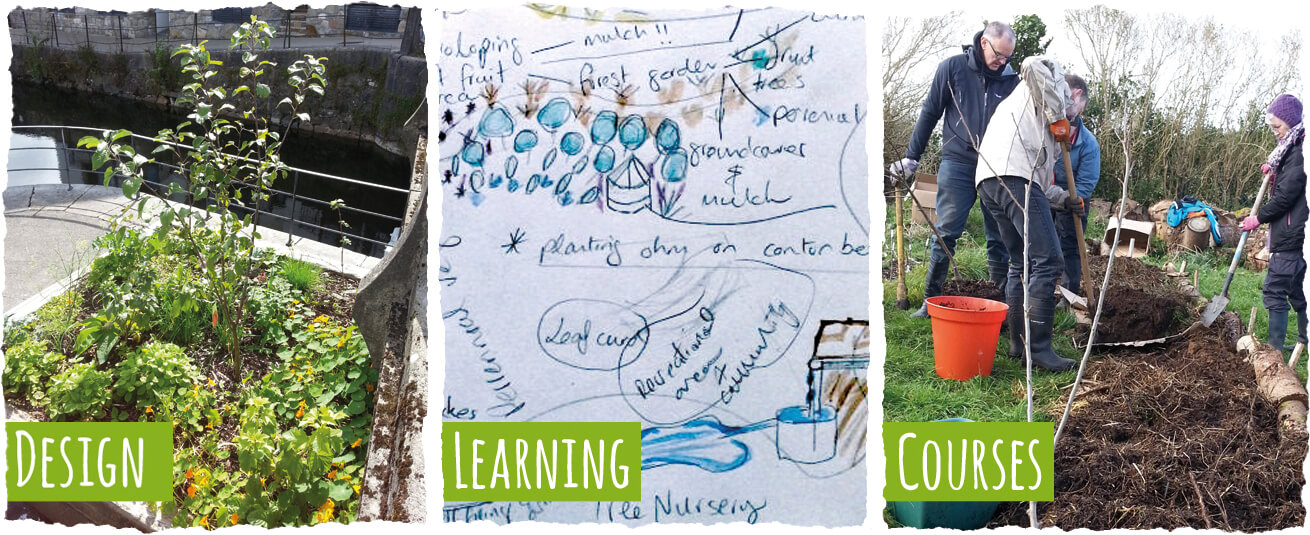 Earthcare Permaculture Design Consultancy, Learning And Courses